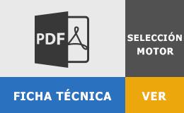 ficha-seleccion-motor
